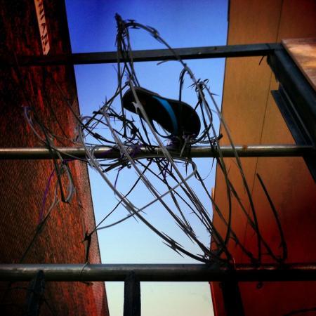 Tangled :: Flip-Flop by Elena Bouvier